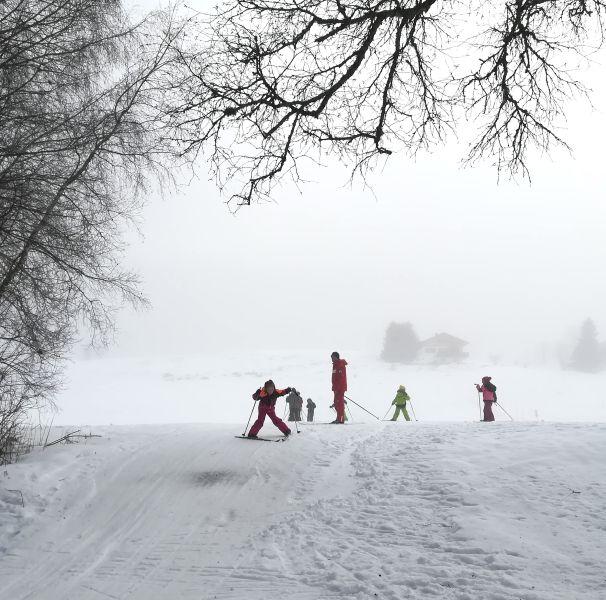 chasse neige en ski de fond (CP-CE1)